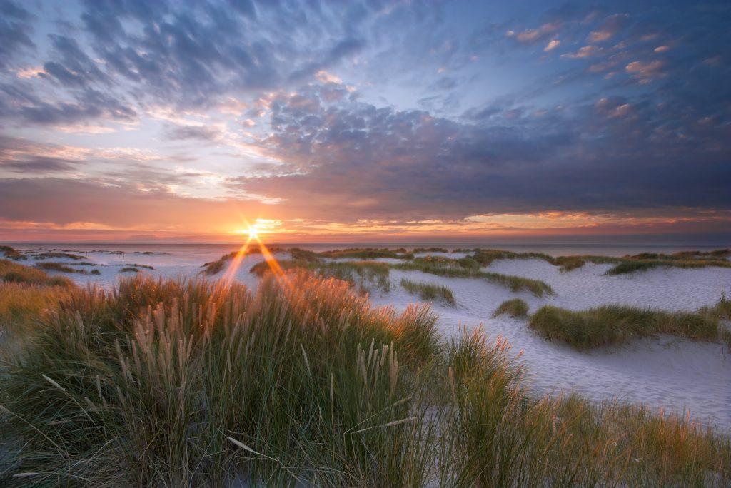 Waddenzee Werelderfgoed Friesland
